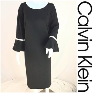 Calvin Klein Beautiful Black & Ivory Trimmed Dress